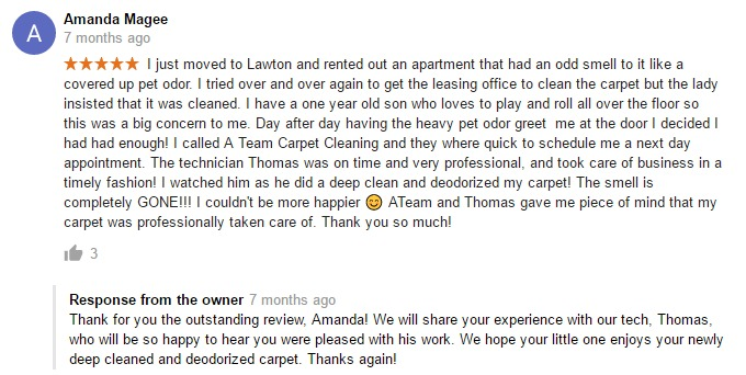 carpet-cleaning-review
